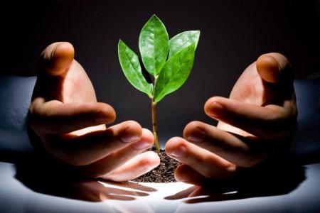 Коллективное инвестирование в интернет-стартапы