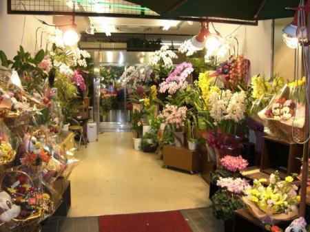 Бизнес план цветочного магазина. Советы, назначения, 1-ые шаги