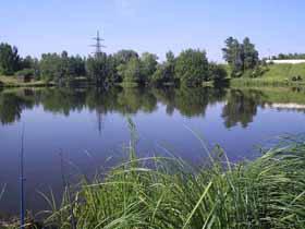 платный пруд