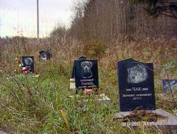 Кладбище для домашних питомцев