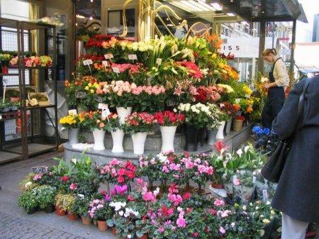 Свой цветочный магазин
