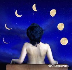 Секреты садовода. Лунный календарь