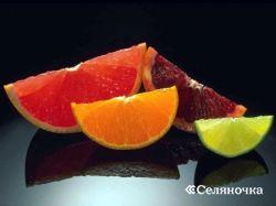 Золотые плоды из рая - цитрусовые