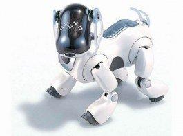 Всеукраинский фестиваль робототехники «Robotica 2012